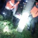 Спасение пенсионерки из тёмного и холодного леса в Ленобласти