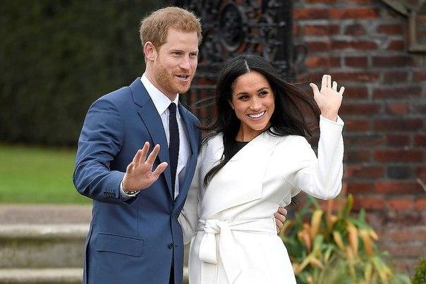 «Это большая ошибка»: брат Меган Маркл призывает принца Гарри отказаться от свадьбы.