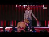 Павел Воля - О собаках, котах и животных