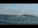 Ballenas Jorobadas Humpback Whales Salinas Ecuador