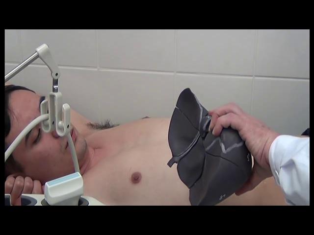 Демонстрация УЗИ печени на пациенте
