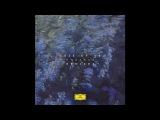 Tale Of Us - Dilemma (Sebastian Mullaert Forestation) Deutsche Grammophon