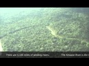 Rainforest Deforestation and its Effects