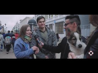 """Что нам делать с бездомными животными Социальный ролик Общественной организации """"Зоозабота"""""""