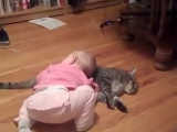 A small child tormented by fat cat