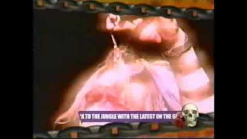 L7 - 100 Greatest Metal Moments Bloody Tampon One-Night Stand Raffle