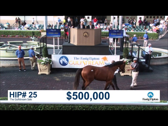 Before They Were Stars AUDIBLE at the 2017 Fasig Tipton Gulfstream Sale