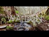 Walden A Short Film