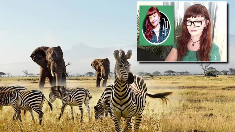 Zoon Politikon's Political Animal Holly Seeliger