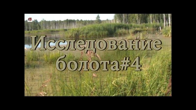 Исследование болота 4. Джунгли травы, мокро, страшно, озеро красота. Цель достигн