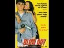 Фильм Английский цирюльник : Blow Dry (2000)