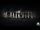 Не ходите, дети, в темный лес гулять [Darkwood #1]