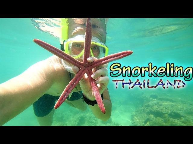 Сноркелінг Тайланд.Пхукет 2018.Snorkeling (Підводне плавання).Андаманське море