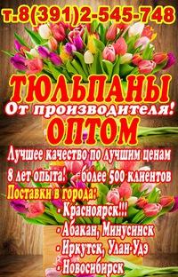 gde-mozhno-kupit-optom-tsveti-v-krasnoyarske-tsveti-perm-deshevo-kruglosutochno