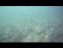 Прибрежье Большого Утриша