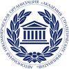 Академия стратегических инициатив