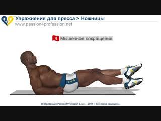 Спорт 24/7. Ножницы упражнение для нижнего пресса
