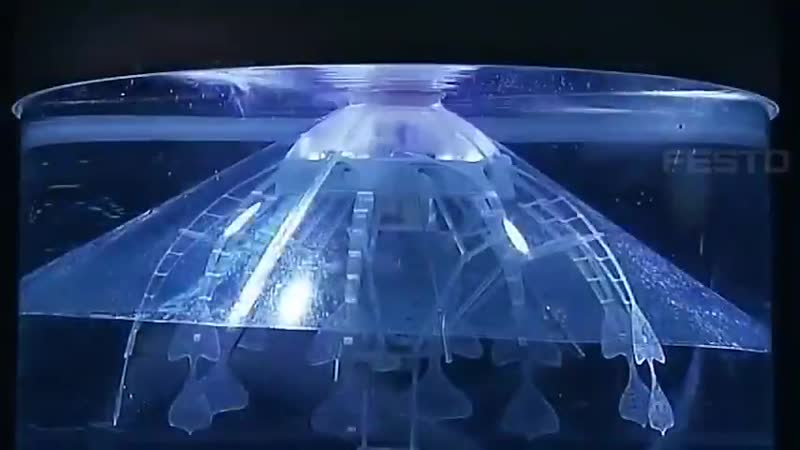 This robot consists of a translucent hemisphere a central watertight body eight tentacles for propulsion AquaJelly's trans