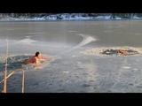 Мужик со своим псом спасает двух собак
