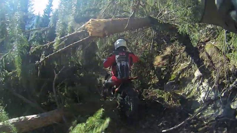 Tagliafuoco bloccata Gruppo Trial Como Valtellina Monitoraggio sentieri
