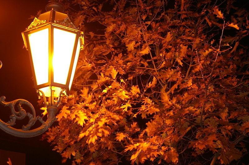 Картинка осень фонарь