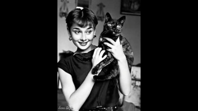За каждым знаменитым человеком стоит... кот!)) 🐱 ❤ 