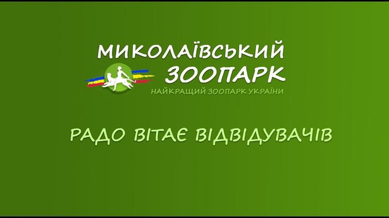 Миколаївський Зоопарк. Найкращий зоопарк в Україні! 2016