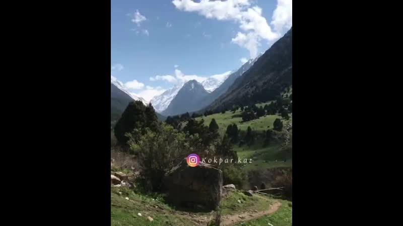 Қайырлы күн достар heart eyes sunny ️ mountain herb evergreen tree Бұл қай жер деп ойлайсыздар point down кокпар