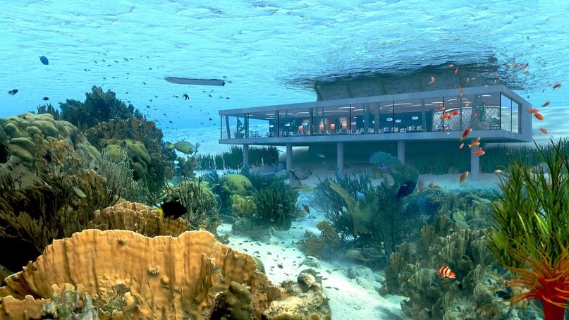 Отель Poseidon Undersea Resort, изображение №3