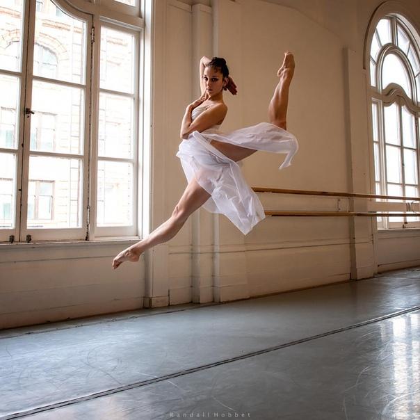 ним картинки утро балерины документам основным