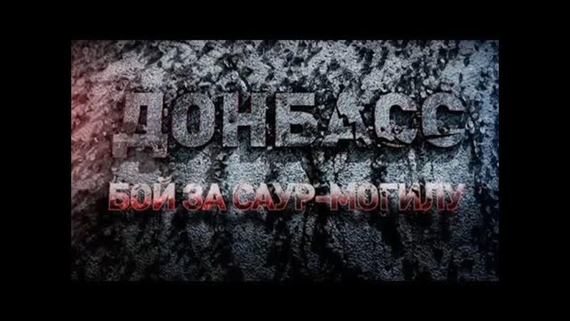 Донбасс бой за Саур-Могилу