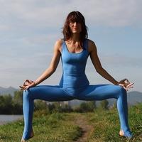 Логотип Net yoga