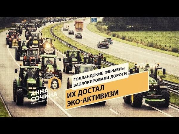 Голландские фермеры заблокировали дороги: их достал эко-активизм (Анна Сочина)