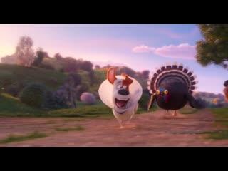 Мультфильм Тайная жизнь домашних животных 2 (2019) - Русский трейлер 6