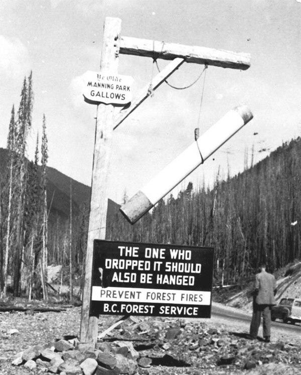 Наглядная агитация по профилактике лесных пожаров в Канаде, 1947 год.