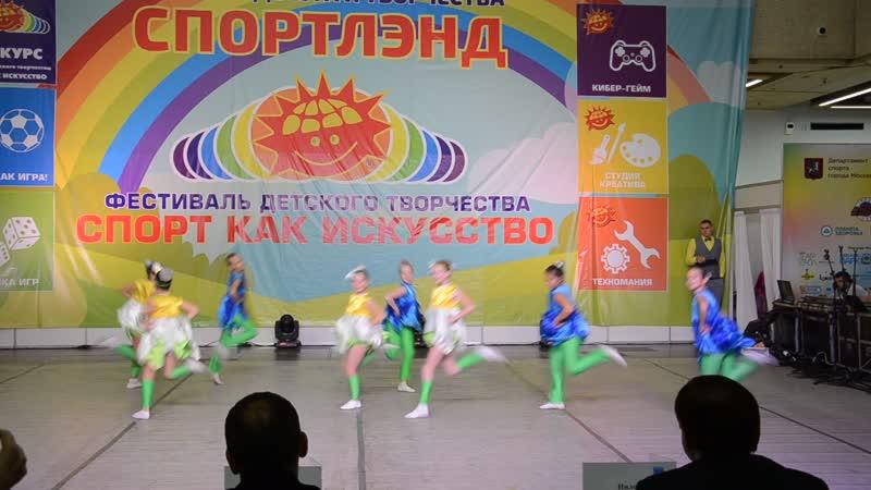 Ромашки Спортленд 04 11 18