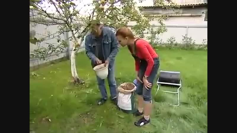 Уход за газоном Школа цветоводства и садоводства