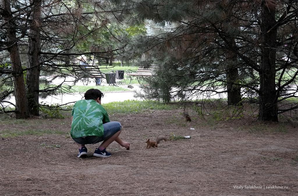 Белки в Парке Первого Президента, Алматы 2019