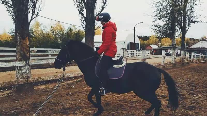 Катя тренирует Рысь