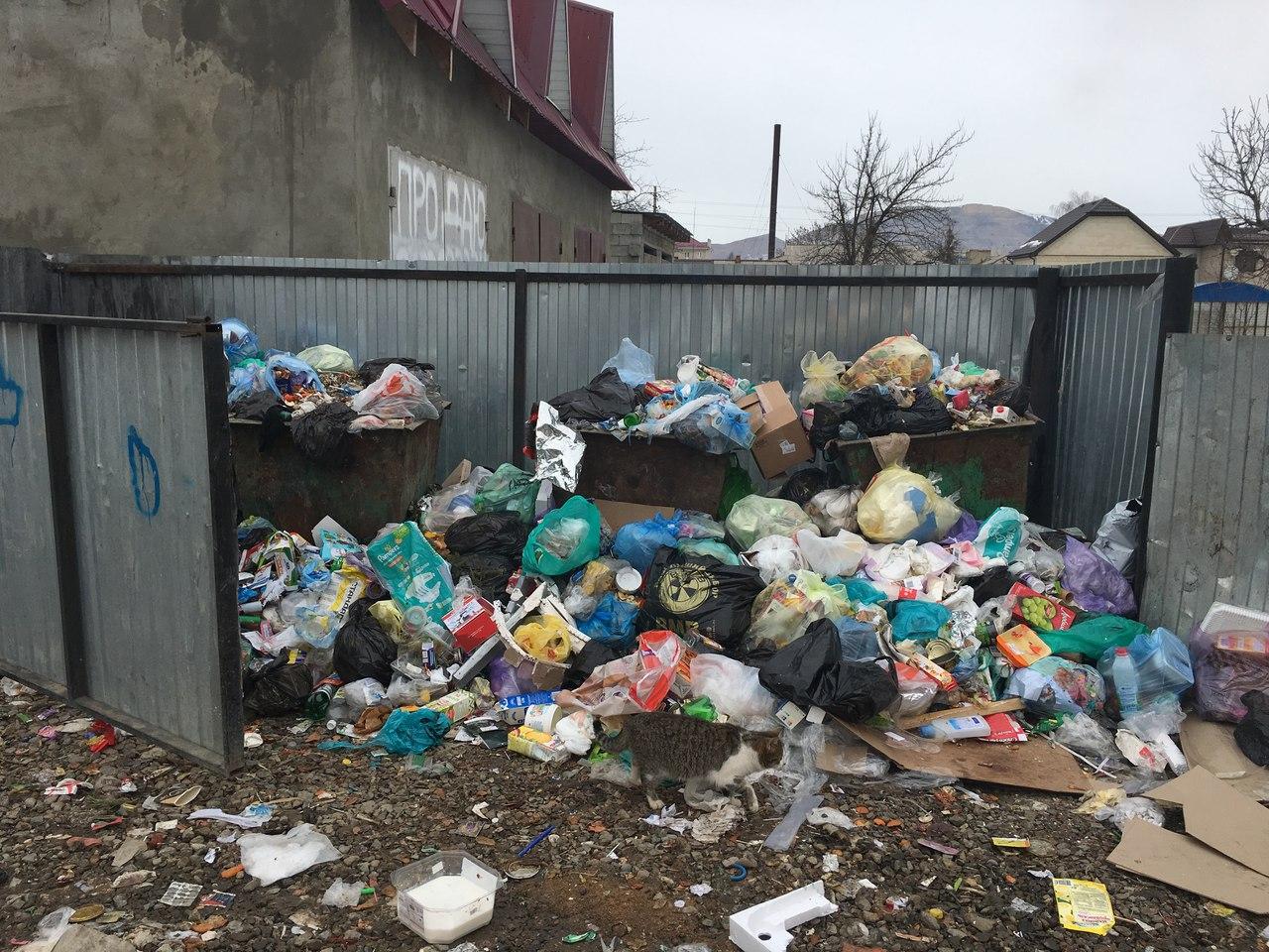 Мусорная проблема в Зеленчукском районе взята под личный контроль главы администрации