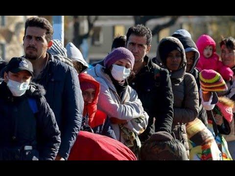 Reakce na Lékaře bez hranic a migranti v německé karanténě