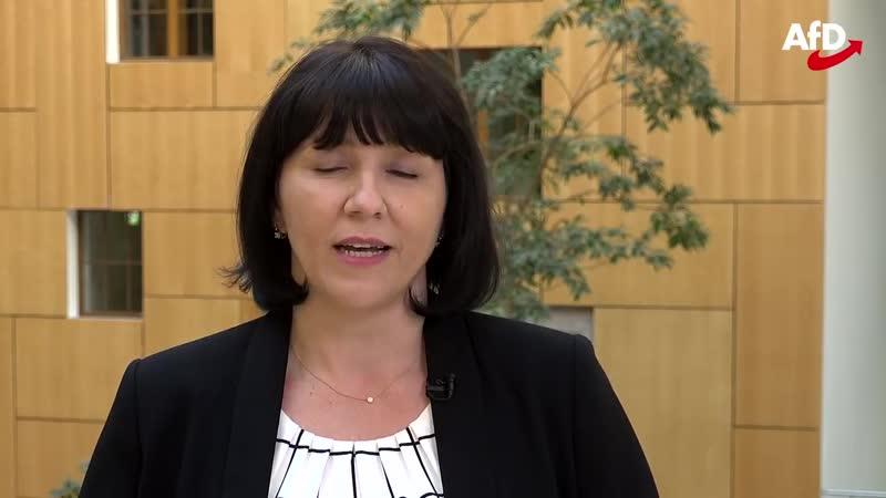 MdB Joana Cotar warnt vor Artikel 13 und Uploadfiltern