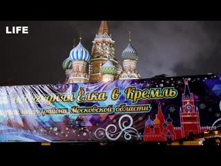 Главную ёлку страны привезли в Кремль