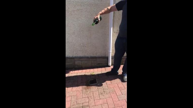 Фанат Конора МакГрегора вылил его виски в канализацию Тупой Подкат
