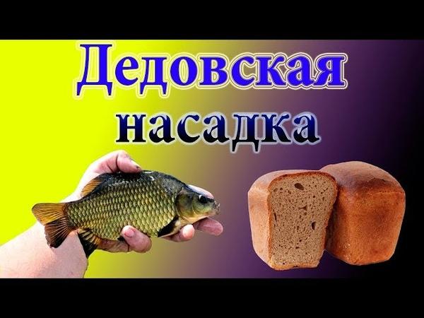 Старинная насадка для карася из черного хлеба