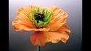 М.К. Цветок мака из холодного фарфора. Автор - Татьяна Несина