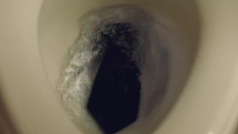 KOHLER Revolution 360 Toilets – Jealous Dog _30