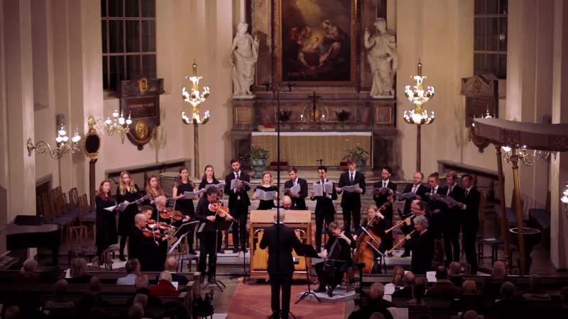 J S Bach Jesu Meine Freude BWV 227 Weinen Klagen Sorgen Zagen BWV 12 J D Zelenka Miserere ZWV 57
