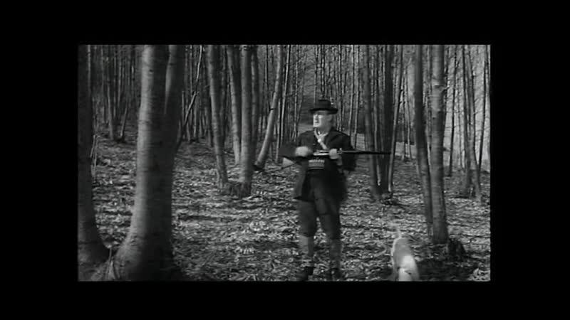 Прохвосты Италия Франция 1959 комедия
