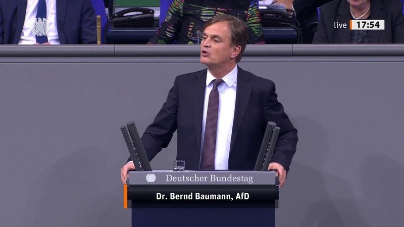 Explosive Rede von Bernd Baumann zu Araber Clans Seehofer sprachlos